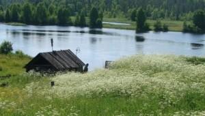 lago korb