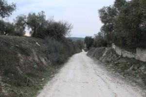 callejon 1