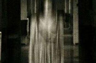 espiritus