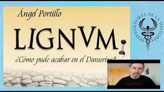 lignum de Angel Portillo